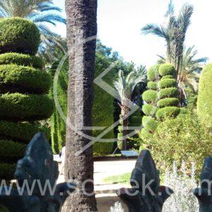 foto-park01-nahled